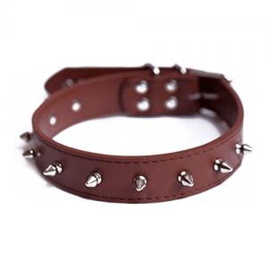 belts/collars/leash/harness